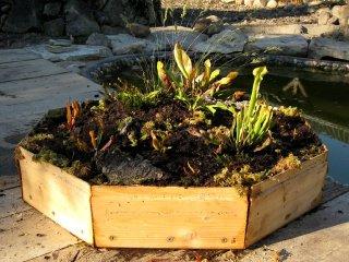 Bepflanze schwimmende Insel