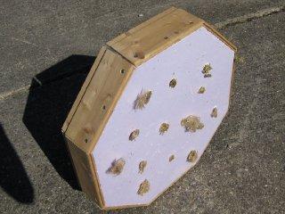 Umrandete Platte mit Dochten (Unterseite)
