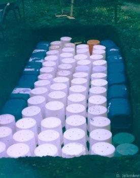 Moorbeet mit Wasserspeicher